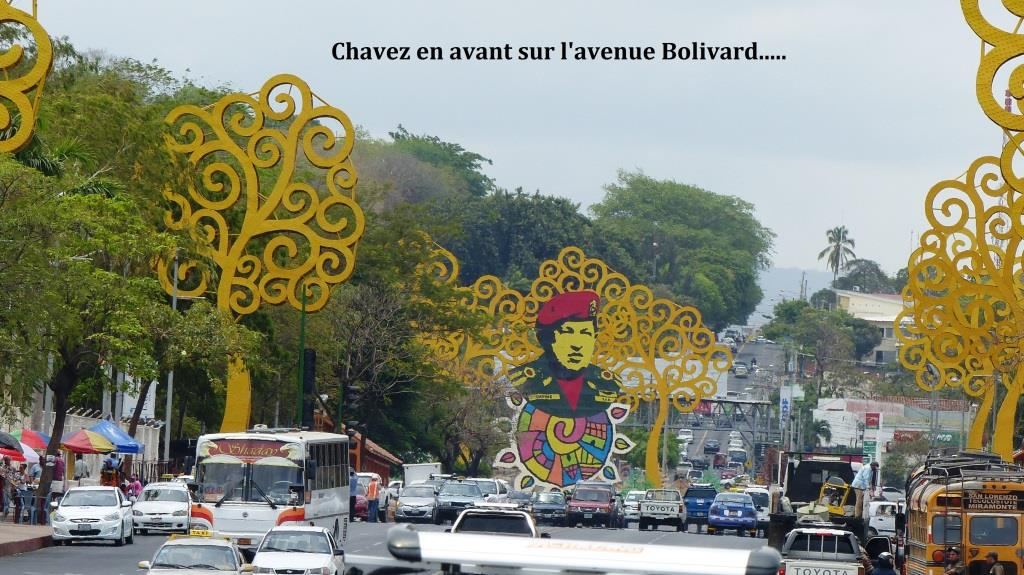 Vaste  avenue Bolivar , bordée d'arbres stylisés jaunes.