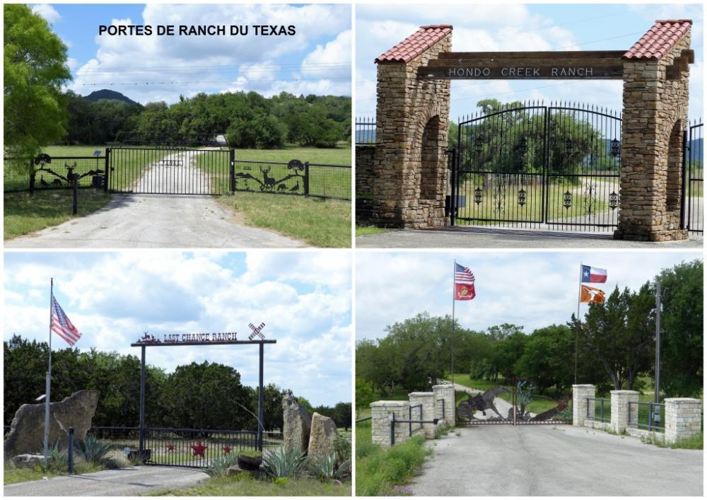 Texas 16 2